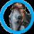 Illustration du profil de Nemesis